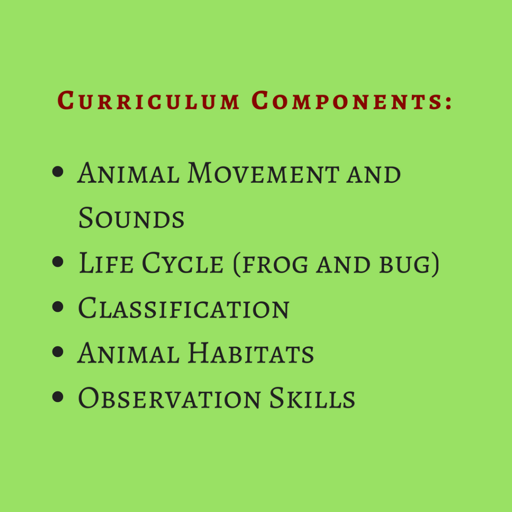 curriculumcomponents_pond