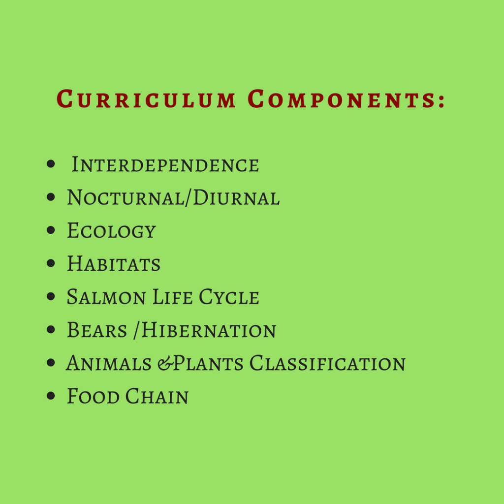 curriculumcomponents_forest